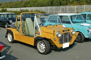 Mini Moke for Sale