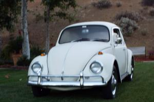 1967 BEETLE....WOW..THE NICEST YOU WILL SEE