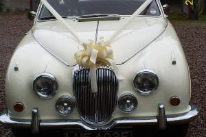 DAIMLER SP 250 CREAM