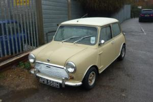 1969 Morris Rover Mini Cooper Mk. II in Elpaso Beige and Old English White