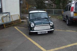 classic mini British racing green