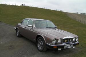 daimler 4.2 litre- not jaguar xj6 series 3 vdp  Photo