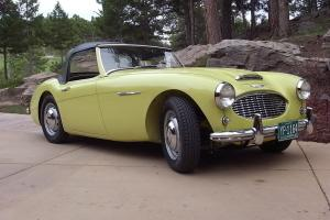 Austin Healey 100-6 BN6 Concours Gold Photo