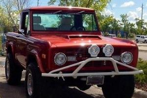 Ford : Bronco 1/2 Cab