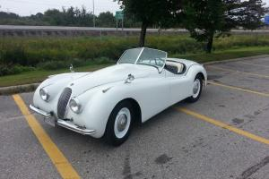 Jaguar : XK OTS Roadster two seat Photo