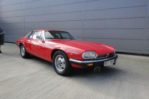 Jaguar XJS Low mileage survivor -non restored