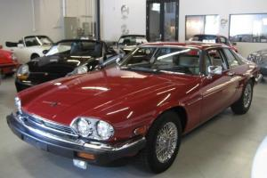 Jaguar : XJS Photo