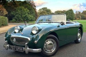 1959 Austin Healey Frogeye Sprite 948cc - LEFT HAND DRIVE - ALL STEEL CAR