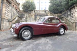1956 Jaguar XK140 SE - MC Fixed Head Coupe Manual Burgundy Photo