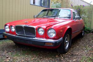 Jaguar XJ6 1980 Series 111 4 2L Auto Nice RED Colour in Colac, VIC Photo