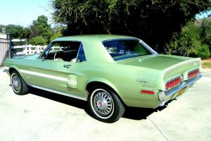 Ford : Mustang GTCS