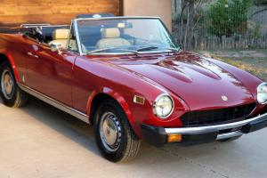 Fiat : Other Spider Convertible 2-Door