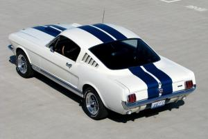 Ford : Mustang GT350 clone