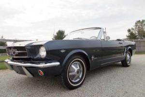 Ford : Mustang DELUXE PONY