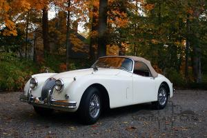 Jaguar : Other XK150 Roadster Photo