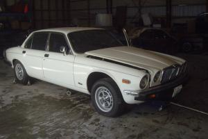 Jaguar : XJ6 4 door sedan