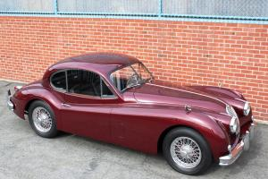 Jaguar : XK MC Photo