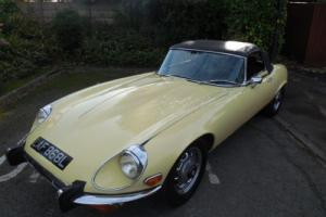Jaguar E Type Photo