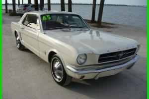 Ford : Mustang Leather