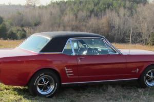 Ford : Mustang Candyapple Red Ext. - Black w/ black Int.