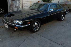 Jaguar : XJS base Photo
