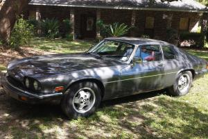 Jaguar : XJS Leather