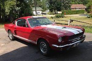 Shelby : GT350 2DR