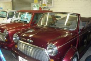 1991 Classic Rover Mini LAMM Cabriolet in Burgundy Red Photo