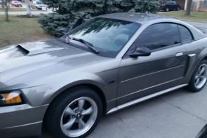 Ford : Mustang GT