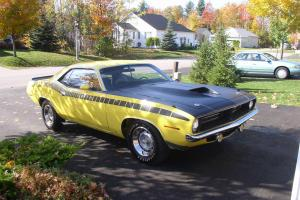 Plymouth : Barracuda 'Cuda Photo