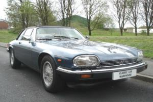 Jaguar XJS Photo