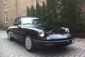 Alfa Romeo : Spider Commemorative Edition
