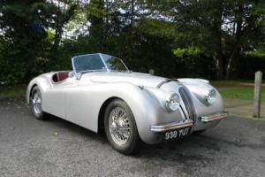1954 Jaguar XK120 Roadster Photo