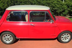 Morris Mini K 1100 1969 in Canungra, QLD