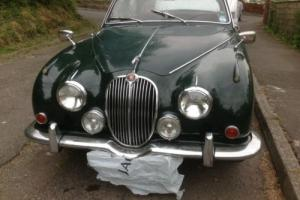 Jaguar 2.4/240 British racing green. Red leather. Photo