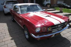 Ford : Mustang V8 Shelby Clone
