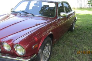 Jaguar : XJ6 SERIES 111 VAN DEN PLAS Photo