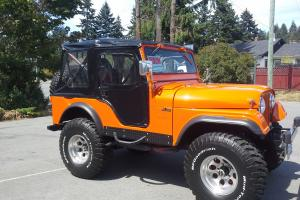 Jeep : CJ cj5 willy's