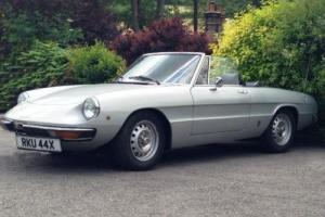 1981 Alfa Romeo Spider Junior 1600 Series II 'Kamm tail' Photo