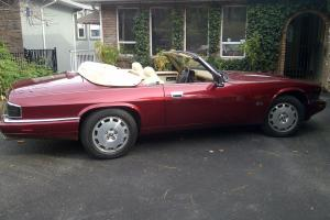 Jaguar : XJS 2+2 Convertible 2-Door
