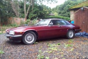 1991 Jaguar XJ-S Photo