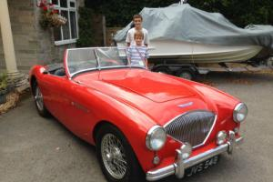 RED Austin Healey 100/4 1954 *Only 6900 Miles since professional Restoration*