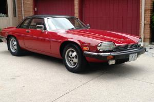 Jaguar : XJS CABRIOLET Photo