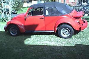VW Beetle 1970 1600 Show CAR