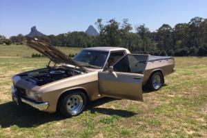 WB Holden Style Side UTE 308 V8 in QLD