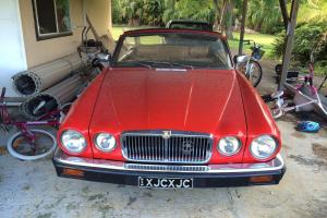 1975 XJSC Jaguar Convertible in NSW