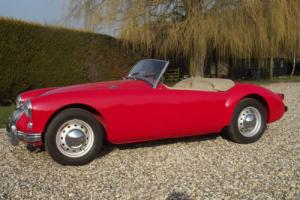 MG MGA 1500 Mk1 Roadster Photo