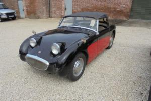 1962 Austin Healey Frogeye sprite fresh import for Restoration
