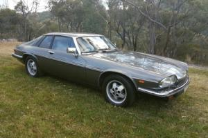 1984 Jaguar XJS HE V12 Coupe 5 3 Litre Automatic in NSW
