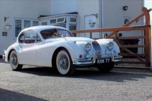 Jaguar XK140 Photo